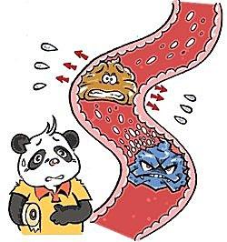 腸胃炎怎麼吃 ?